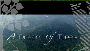 A Dream of Trees (Documentary Review)