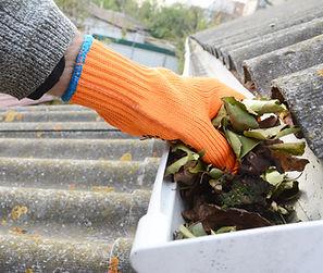 nettoyage de gouttieres, descentes, enlever les feuilles mortes, bordeaux,