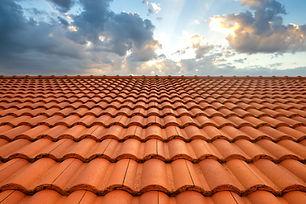 Nettoyage démoussage de toiture bordeaux.jpg