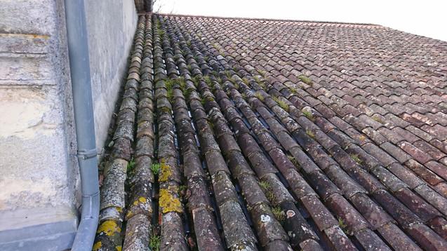 toiture couverte de mousses, algues te lichens, avant demoussage