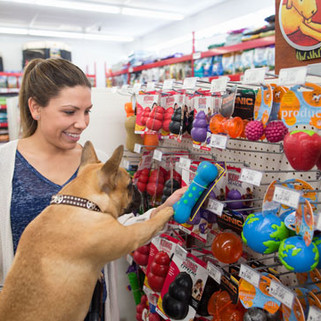Pet Shop & Veterinária