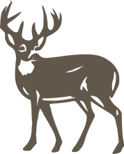 Whitetailed deer.png