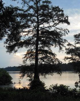 Sky Lake Hunting Property Info