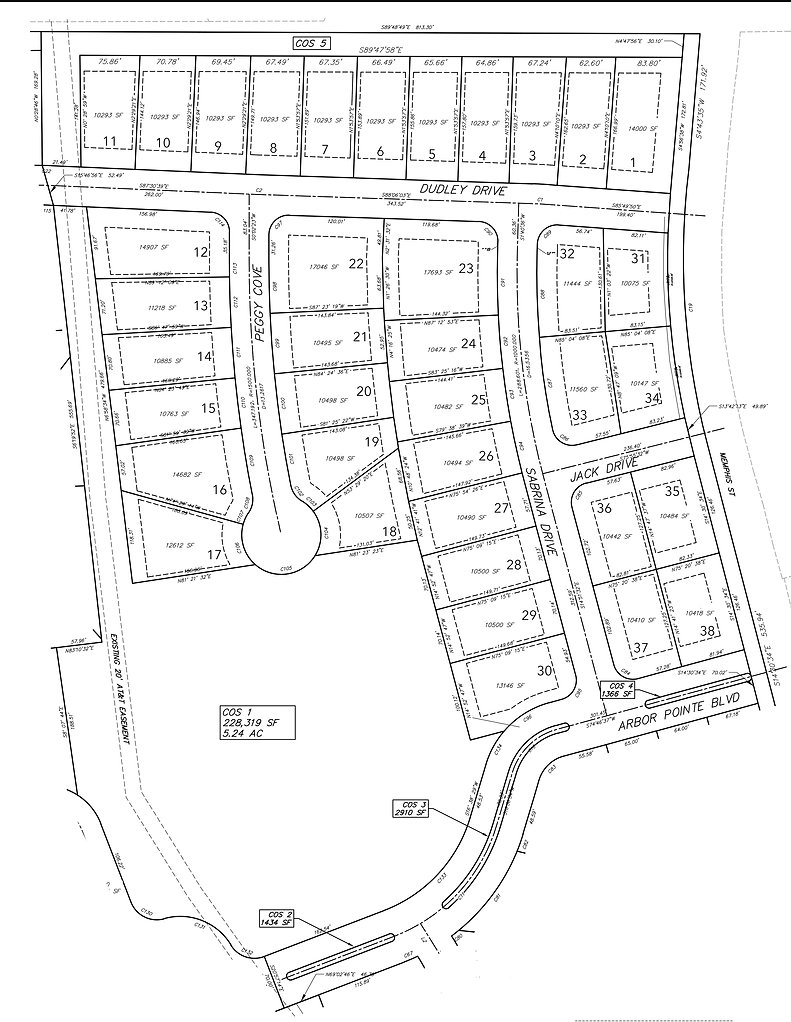 Arbor pointe final plat with street name