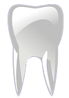tooth-305622_1280.png
