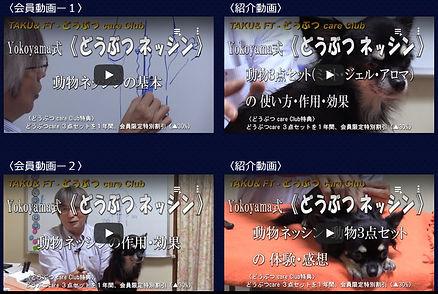 動画へ.jpg