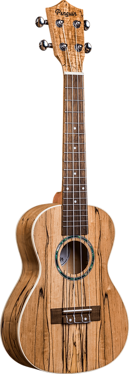 Penguin Classic Spalted Maple, Concert