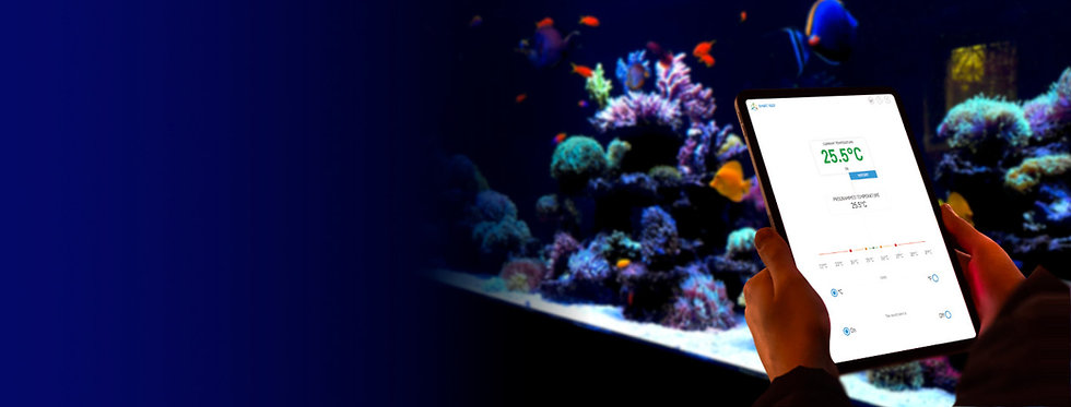Aquarium under control.jpg