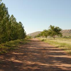North-South Drive Way