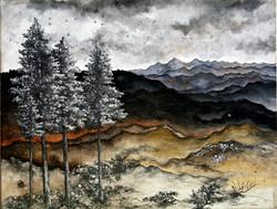 fire ecology- blue ridge, siskiyous