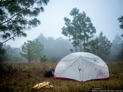 The lone tent
