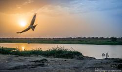 White Nile Sunrise