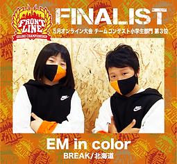 EM in color.png