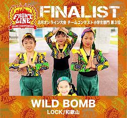 3-WILD BOMB.png