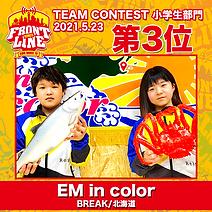 3-EM in color.png