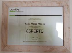 esperto Lignius