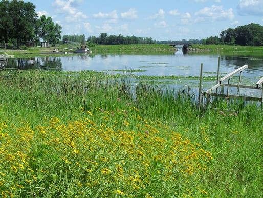 The Center Lakes are delisted from the impaired waters list!