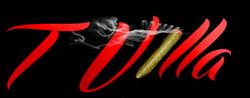 T Villa Logo