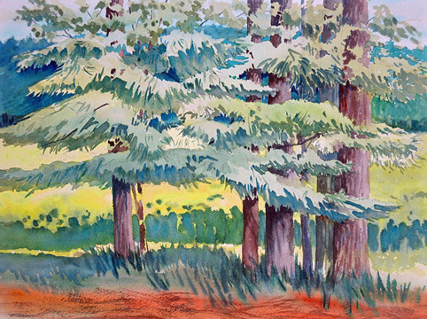 """Janet Hobbs, """"Stand of Pines"""""""