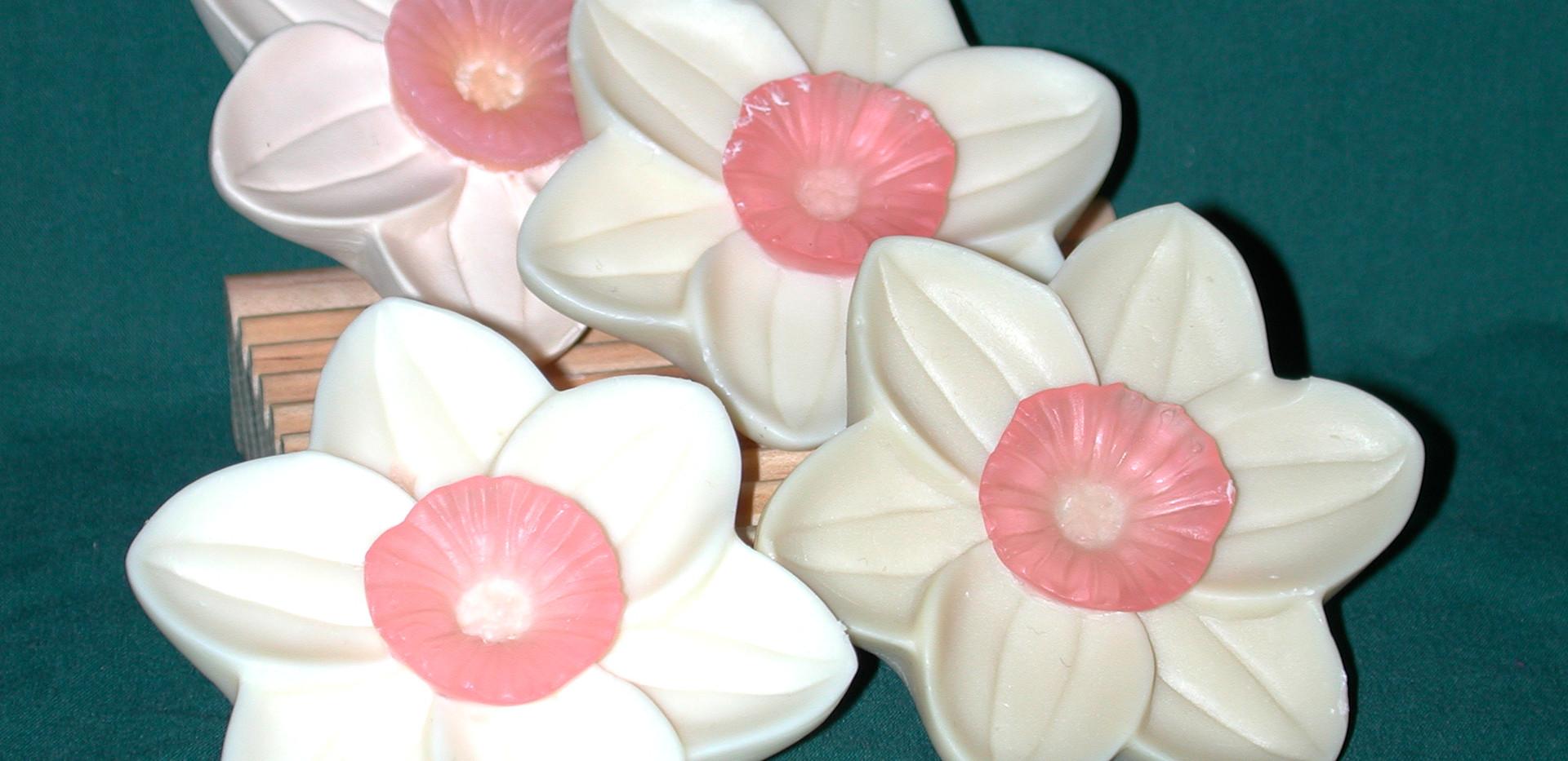 "Barbara Thomas, ""Daffodil Soap"""