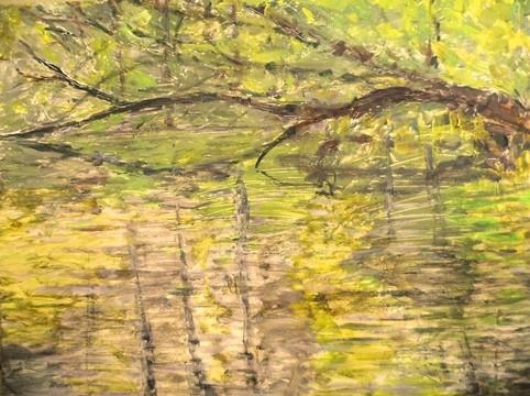 Jim Kociuba, Fresh Pond