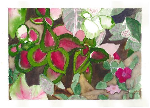 "Joan Ditzion, ""Coleus Tapestry"""
