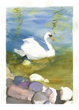 """Joan Ditzion, """"Swan"""""""