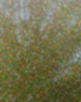 x10_03_Art_Jim_Kociuba_Detail_Quaking_As
