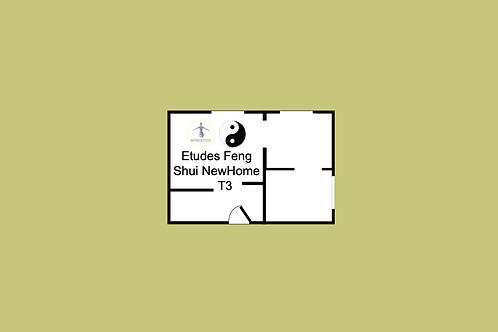 Etudes Feng Shui NewHome T3 (+RDV visio)