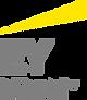 Ernst_&_Young_logo.svg.png