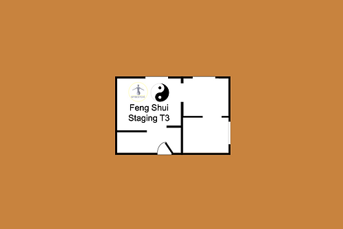 Feng Shui Staging T3 (+1 RDV visio)