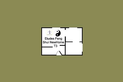 Etudes Feng Shui NewHome T3 (+RDV domicile)