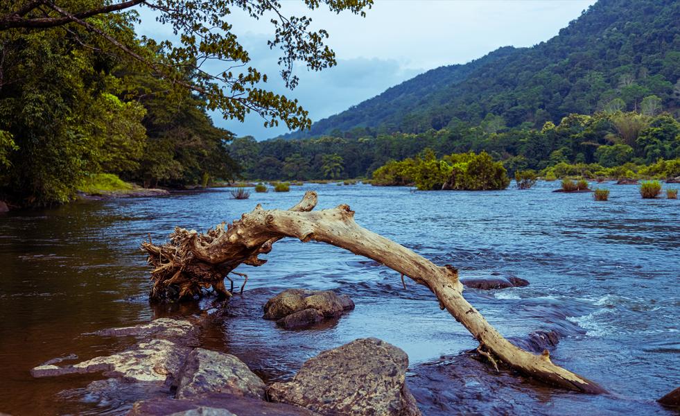 Athirapally Waterfalls. Kerala2021