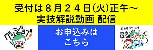 実技解説速報の申し込みボタン.JPG