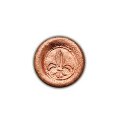 Bronze Liz Pequena