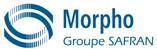 morpho.jpg