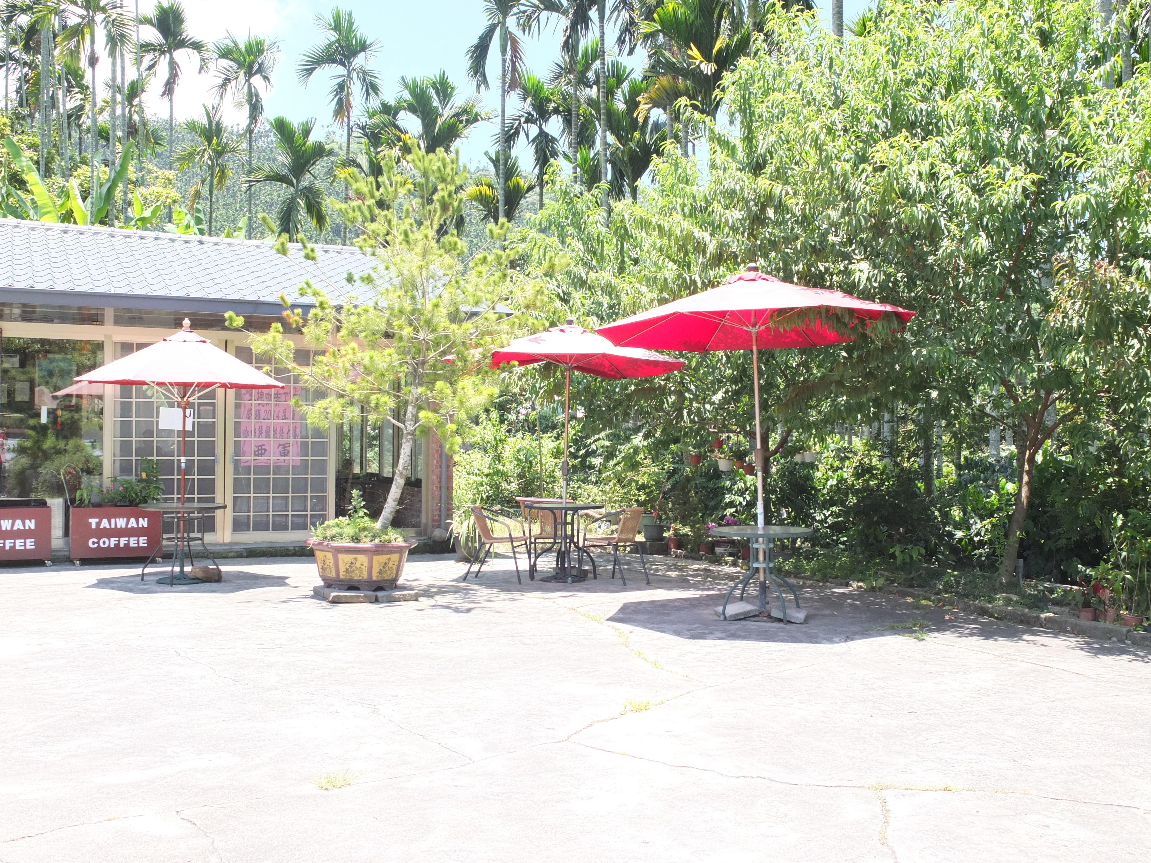 春槐咖啡工坊 (3)