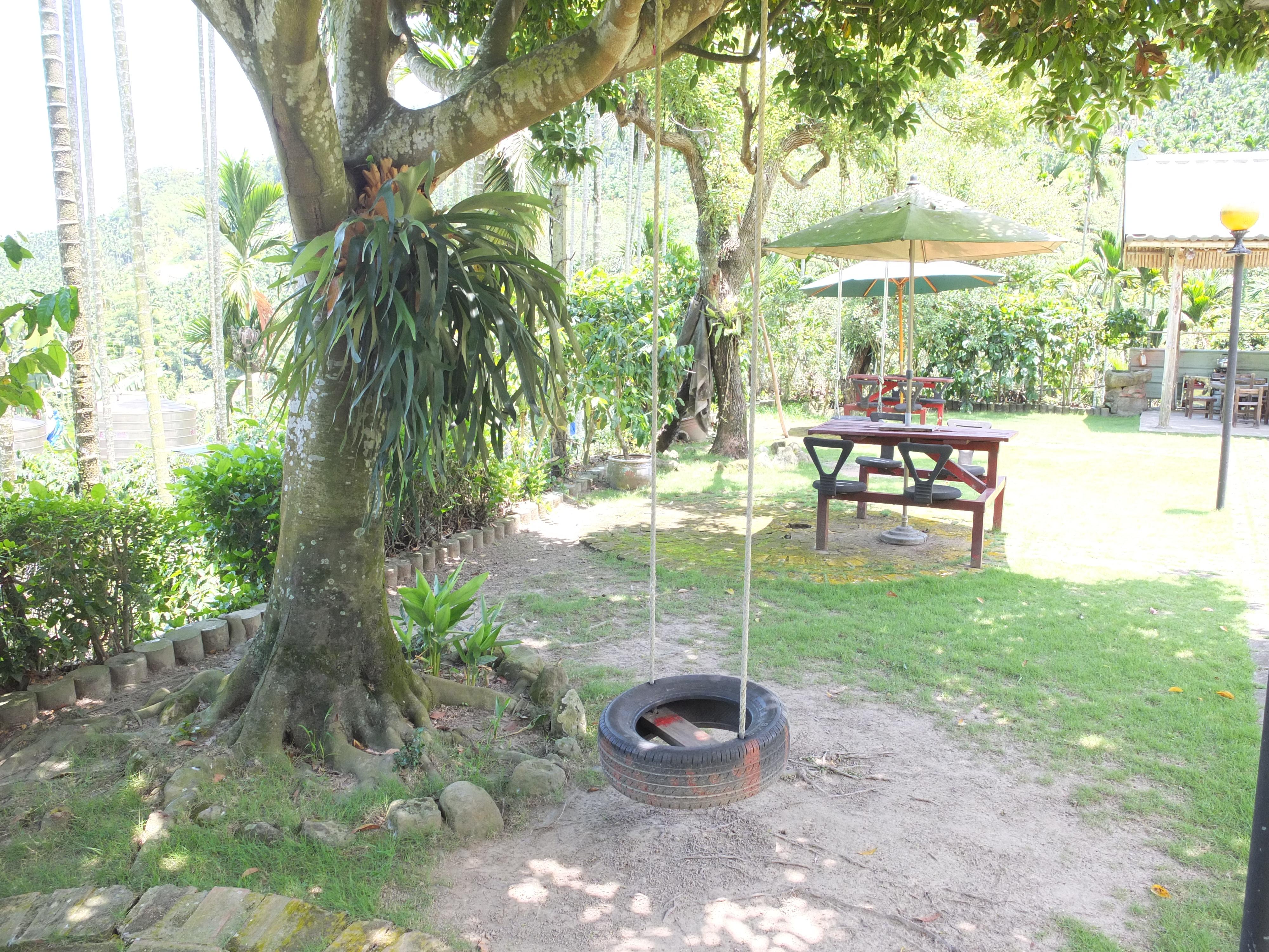 茶園居民宿 (6)