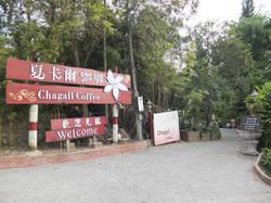 夏卡爾咖啡 (1)