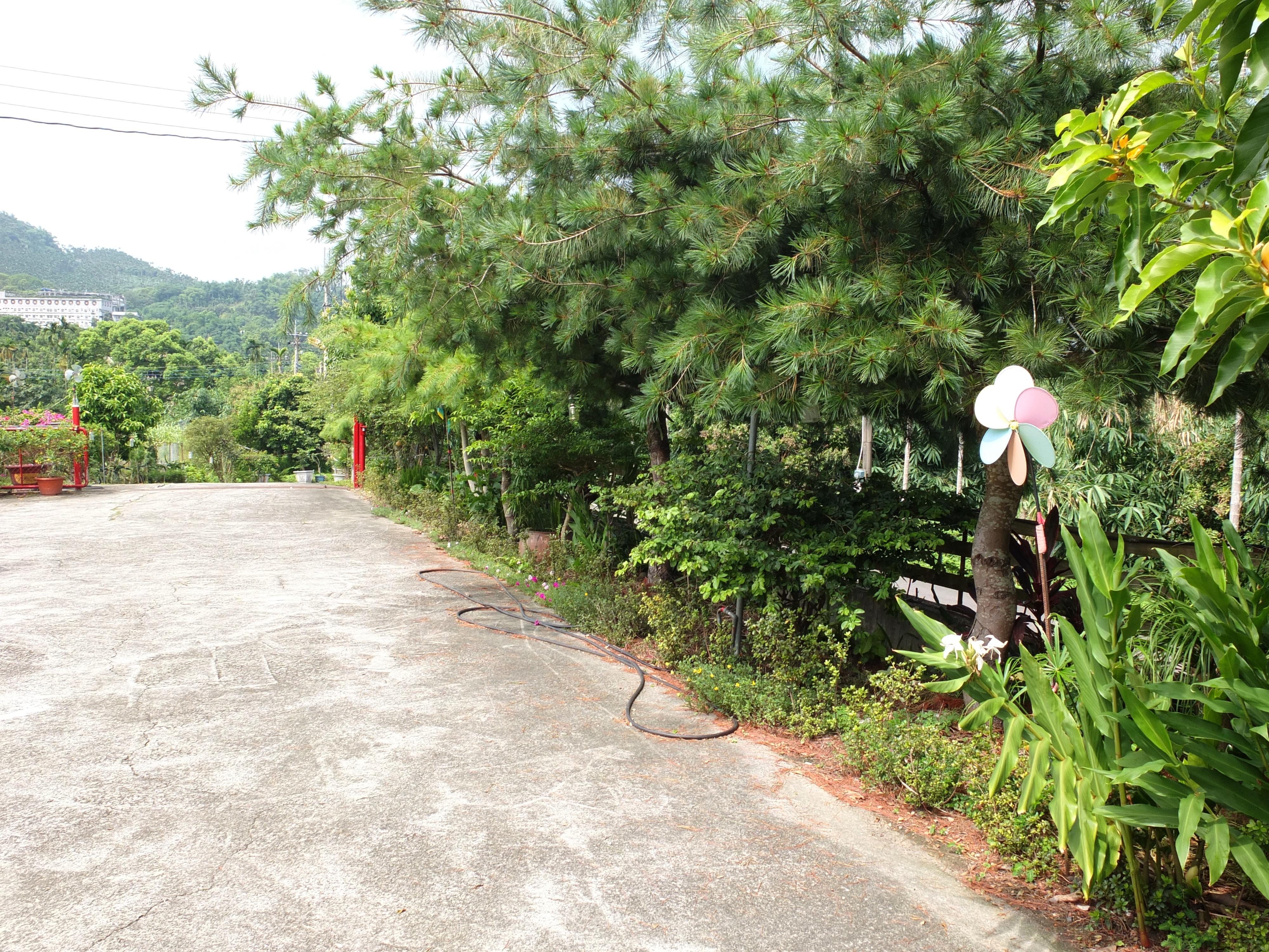 桂林休閒民宿 -室外空間