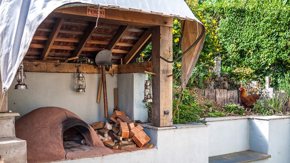 pizza_oven_shelter_edited.jpg
