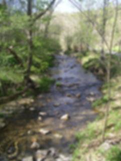 03 Creek by the Furnaces.JPG