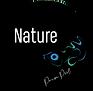 Logo Nature Private Pool.png