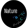 Logo Nature Private Pool.png