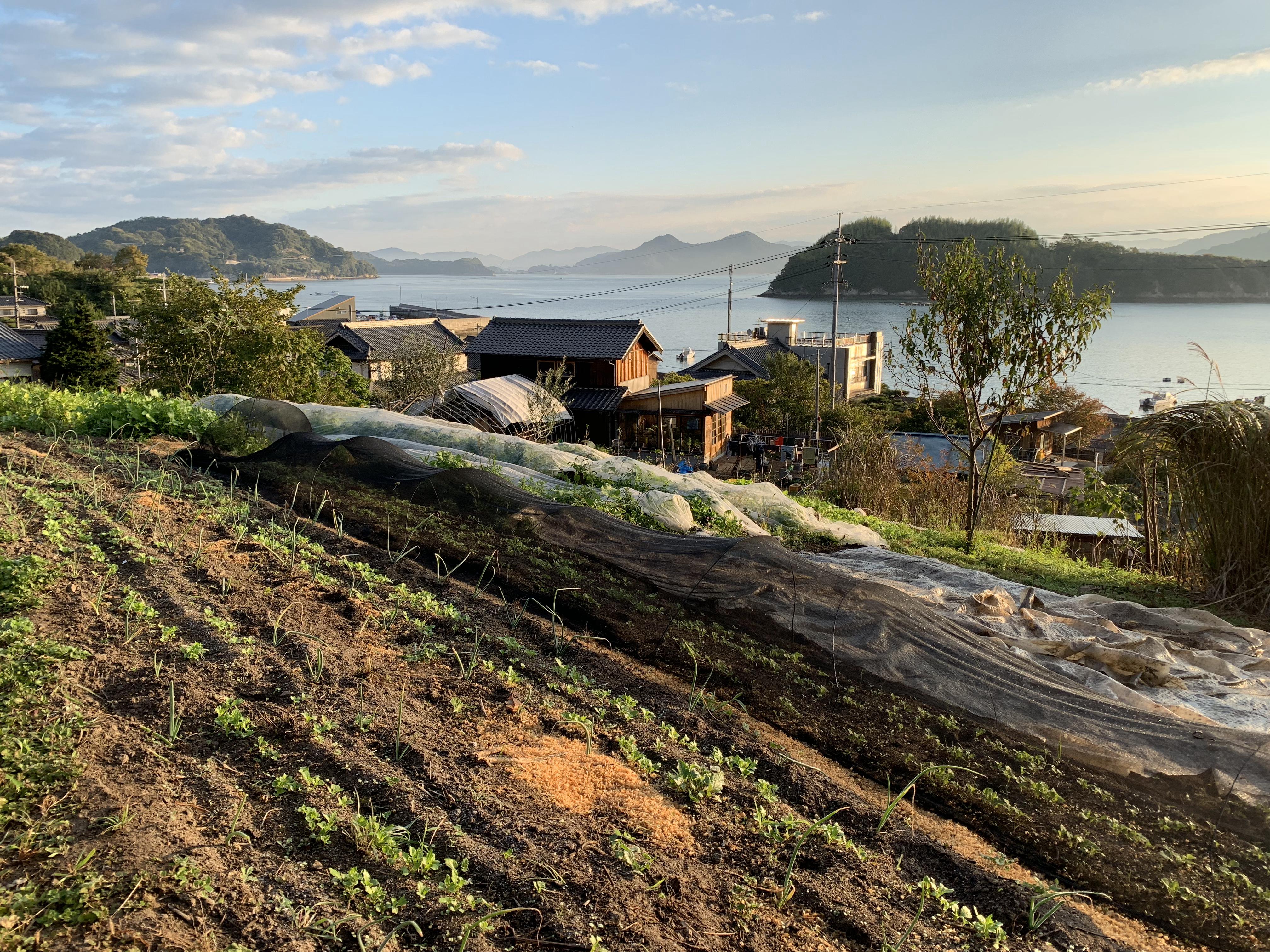 Farm/Garden Tour