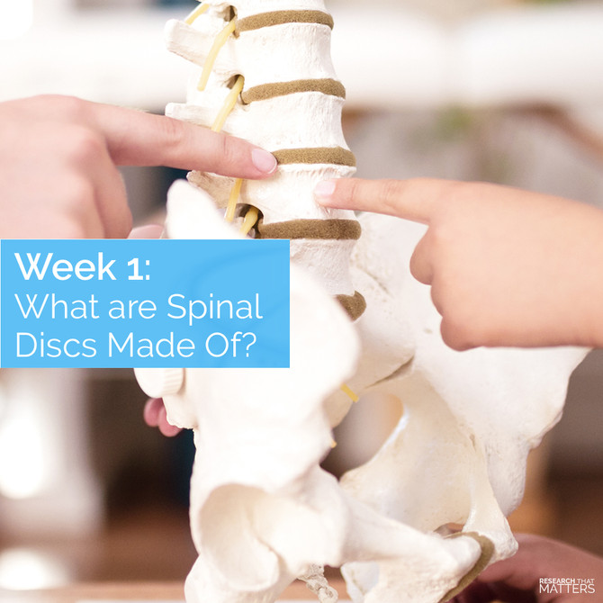 Feb. Week 1 - What are Spinal Discs Made Of