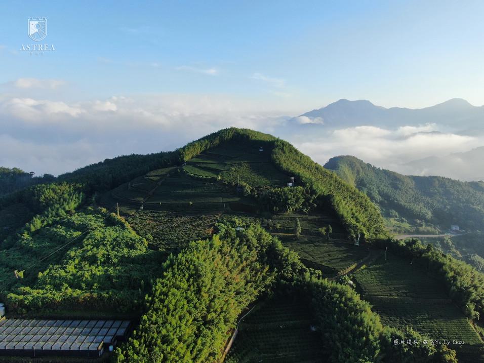 感謝旅客提供空拍照-龍頭坪山