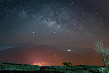 賞日茶園星空夜景