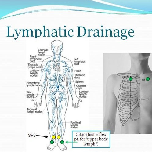 Lymphatic Drain (one free with purchase)