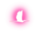 Logo_Pink Spotlight_Icon.png